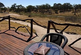 sunsafaris-1-camp-savuti.jpg