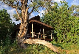 sunsafaris-1-savuti-camp-widlerness-safaris.jpg