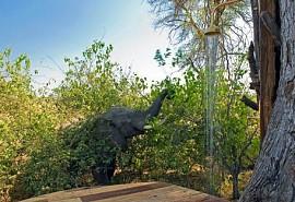 sunsafaris-1-zarafa-camp.jpg