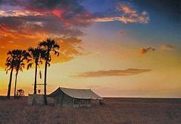 sunsafaris-1-san-camp.jpg