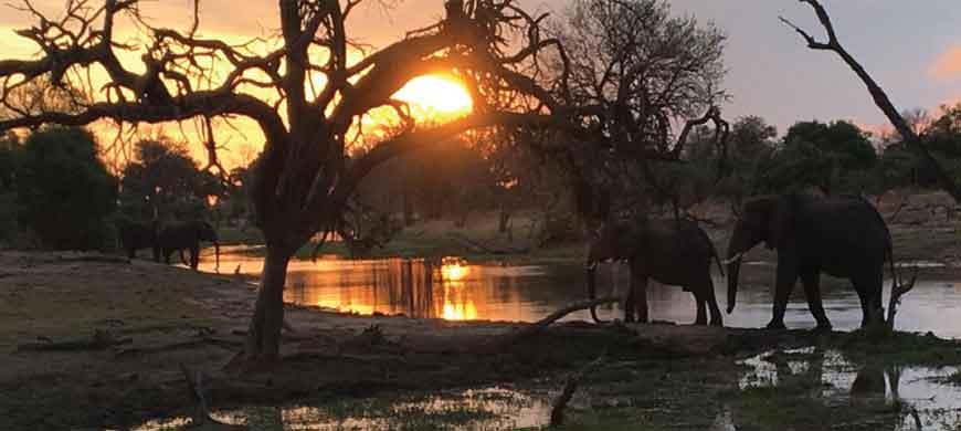 sunsafaris-nokanyana-camp-wide-3.jpg