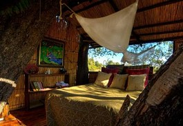 sunsafaris-1-delta-camp.jpg