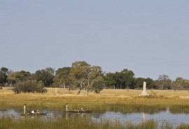 sunsafaris-1-andbeyond-xudum-okavango-camp.jpg
