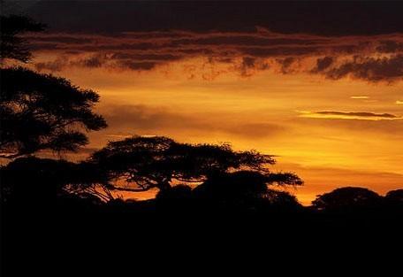 amboseli-sunset.jpg