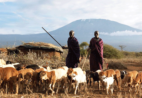 456g_satao-elerai-safari-camp_maasai-herding.jpg