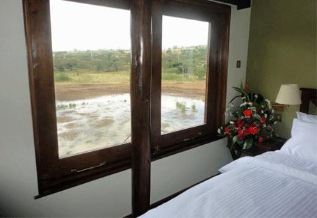 456c_treetops-lodge_bedroom-view.jpg