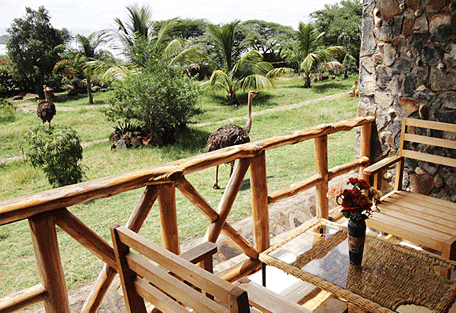 456f_soi-safari-lodge_balcony2.jpg