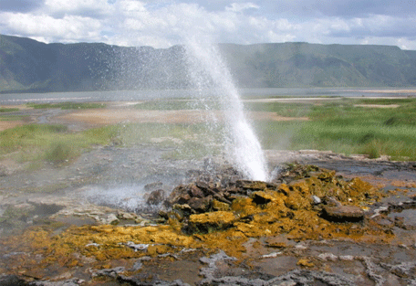 456_lakebogoria_geyser.jpg