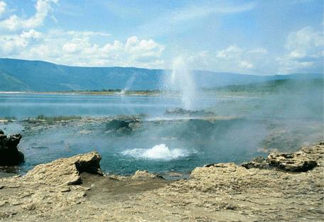 456_lakebogoria_hotspring.jpg