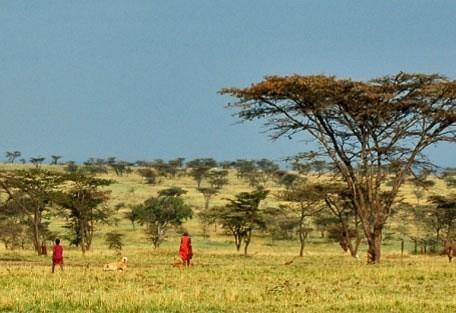 masai-village.jpg