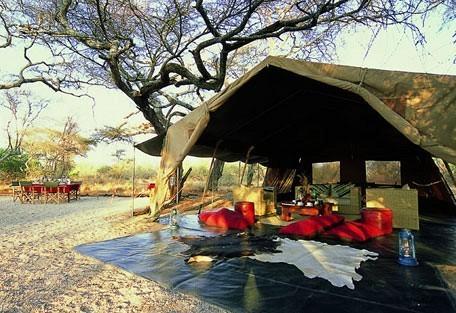 lodge-savanna.jpg