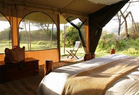 06-guest-tent-interior.jpg