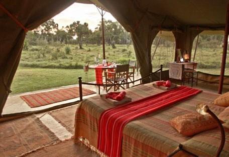 03-guest-tent-interior.jpg