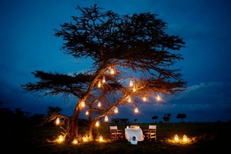 07-romantic-diner-out-in-the-bush.jpg