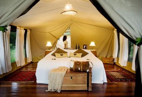 tent_1.jpg
