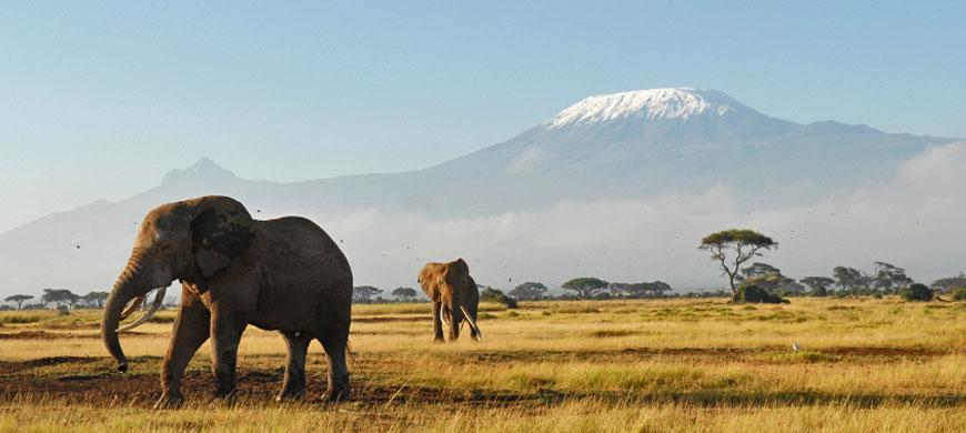Romantic Tourism in Kenya 78