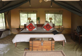 456a_leleshwa-camp_bedroom2.jpg