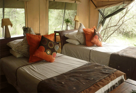 456b_leleshwa-camp_bedroom.jpg