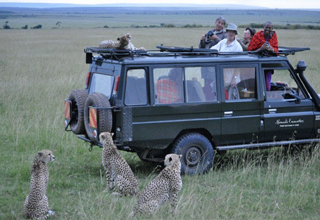 456f_mara-bush-houses_game-drive.jpg