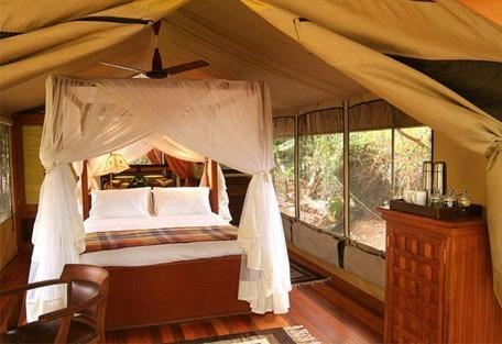 05-guest-tent-interior.jpg