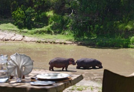 08-hippos-in-the-rive.jpg
