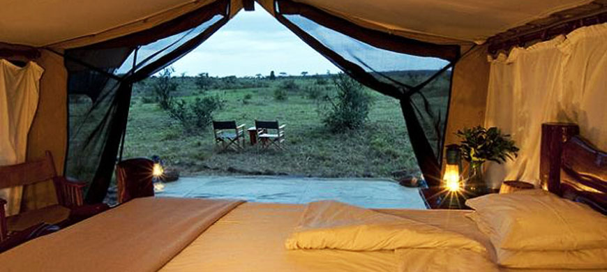 tent_view.jpg