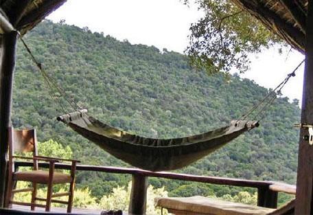 hammock_1.jpg