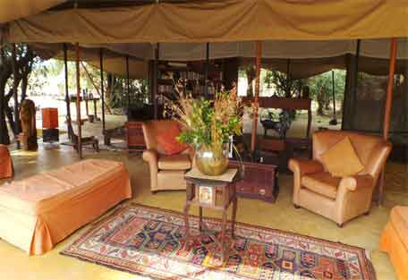 sunsafaris-spekes-camp-456-2.jpg