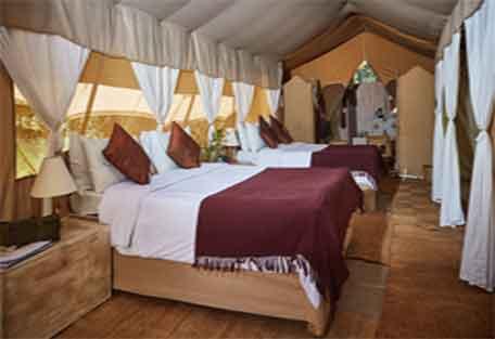 sunsafaris-spekes-camp-456-5.jpg