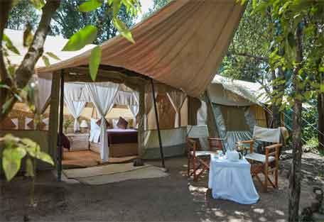 sunsafaris-spekes-camp-456-6.jpg