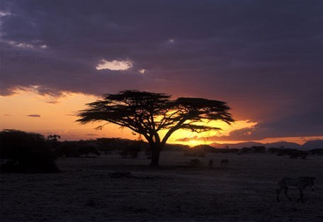 samburu-buffalo-springs-and.jpg