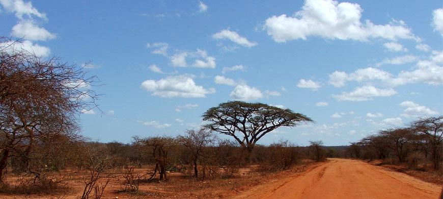 Tsavo-West.jpg