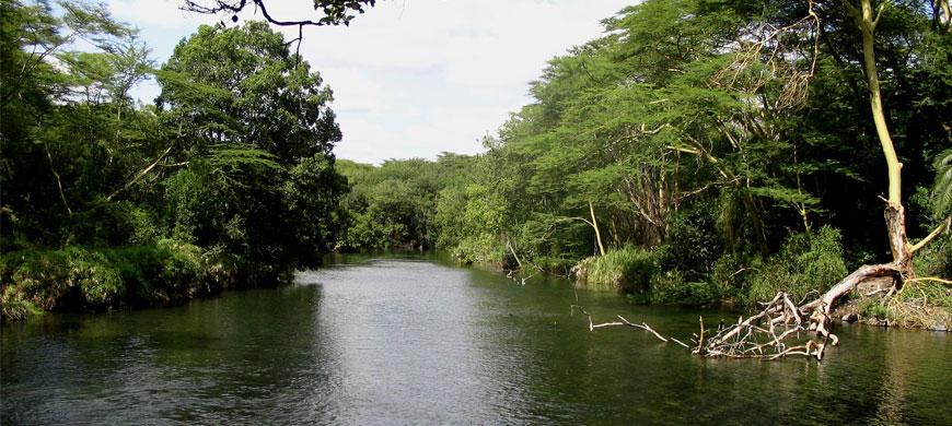 tsavo_river.jpg