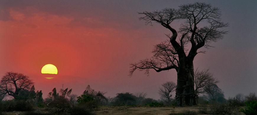 870_liwonde_sunset.jpg