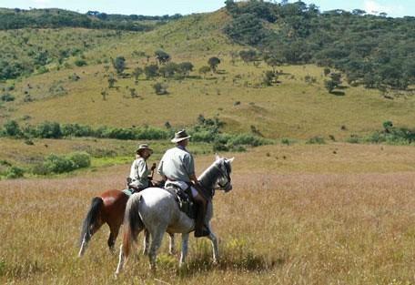456_nyika_horseriding.jpg