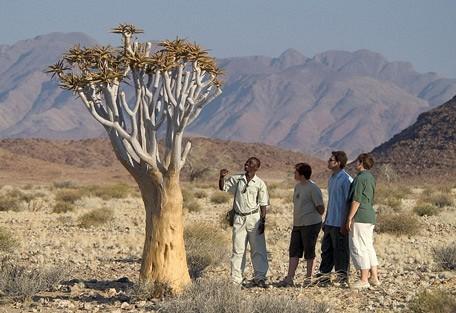 namibia-scene.jpg