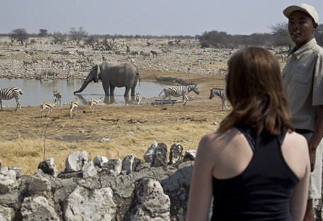 namibia-waterhole.jpg