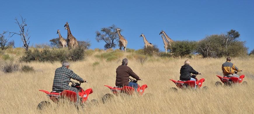 quad-safari.jpg