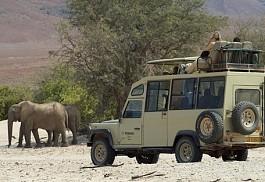 elephant2-drive.jpg