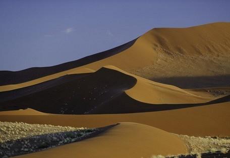 dunes-wilderness.jpg