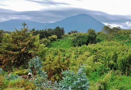 456_volcanoes_mtbisoke.jpg