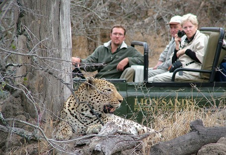 kruger-park-leopard-drive.jpg