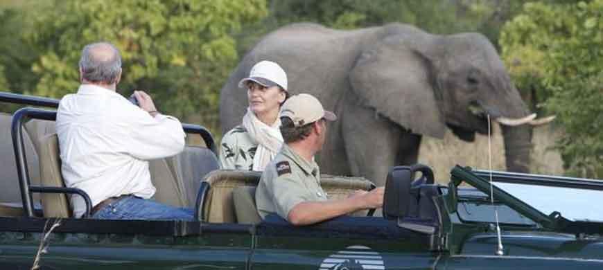 kapama-elephant-drive.jpg