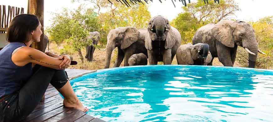 sunsafaris-africa-on-foot-wide-3.jpg