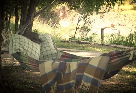 456e_elephants-drift_swing-bed.png