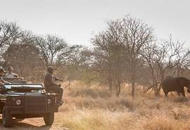 sunsafaris-1-nthambo.jpg