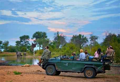 sunsafaris-nthambo-tree-camp-456-8.jpg