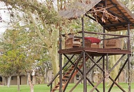 xanatseni-private-camp-1-sun-safaris.jpg