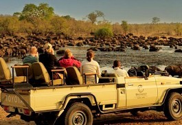 buffalo-waterhole.jpg
