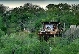 sunsafaris-1-kingston-treehouse.jpg